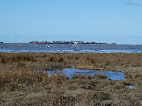 Hilbre island marshes