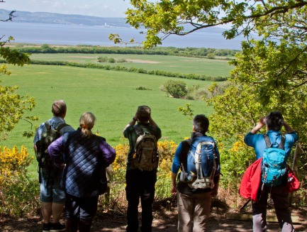 Wirral Country Park, Wirral Walking Festival