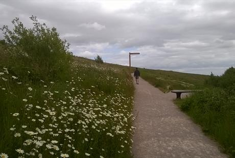 Port Sunlight River Park